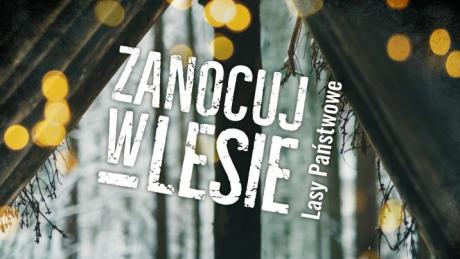 Program ZANOCUJ W LESIE